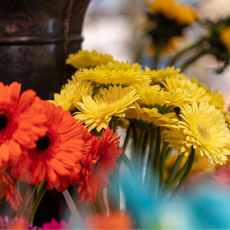 Stongs_Careers-Gallery-Images_Floral12